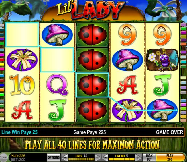 Igt slots lil lady serial number top livres poker