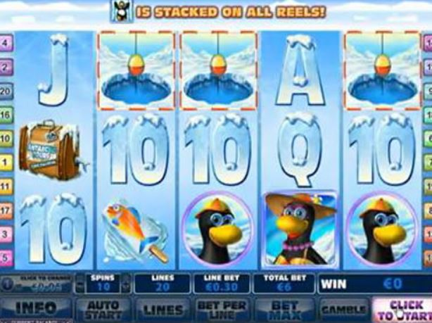 online casino gambling dolphins pearl
