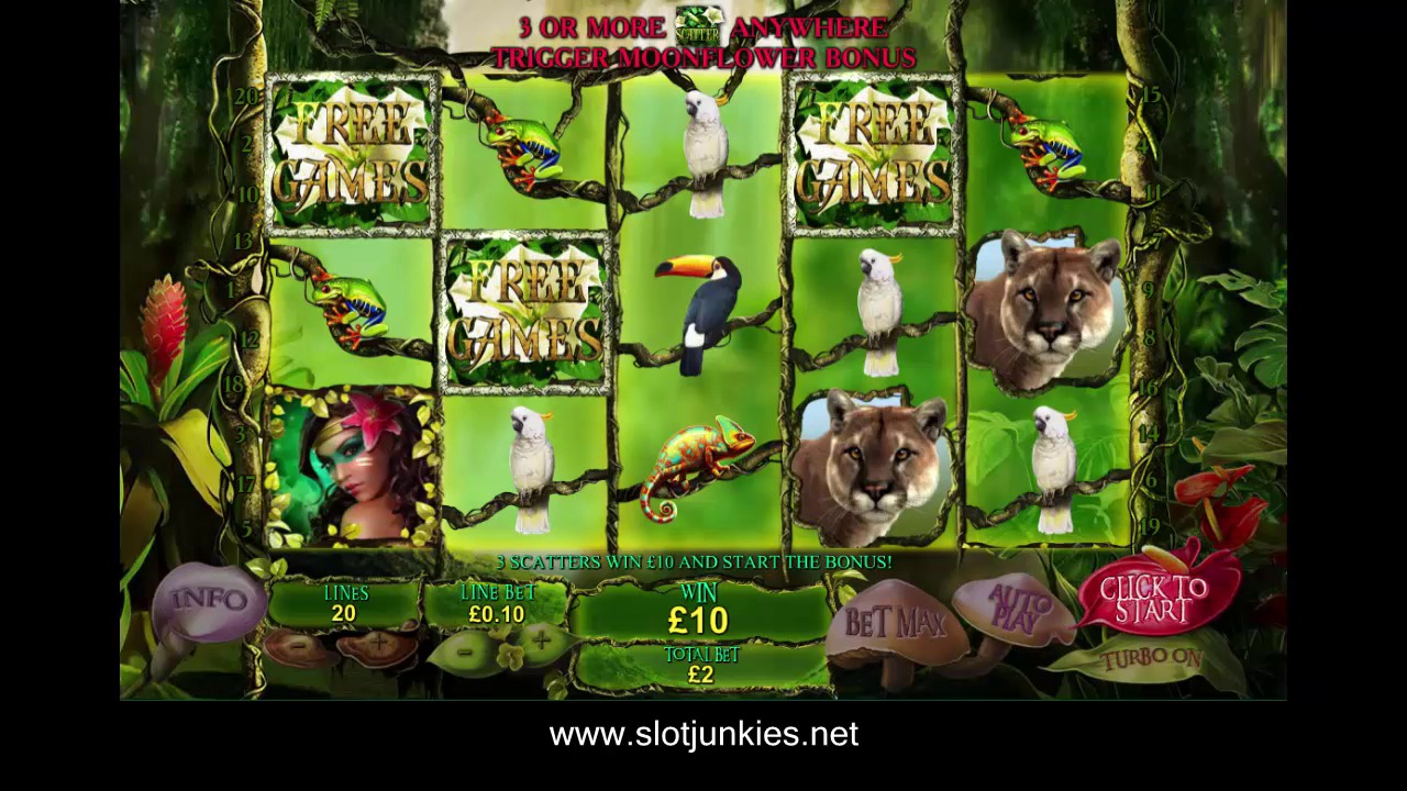 Secrets of the amazon Slot by PLAYTECH